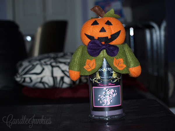 scarecrow candle cozie