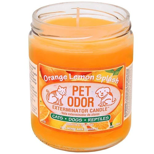 Best Candles For Pet Odor On Amazon